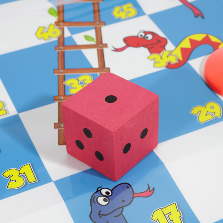 Giant Snakes and Ladder Game Set