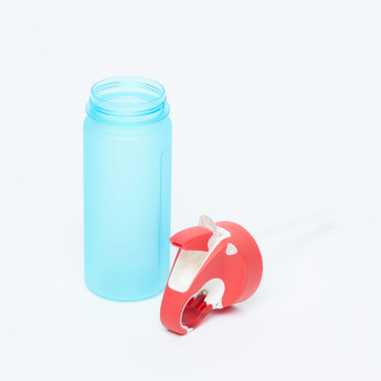 Juniors Water Bottle with Spout - 600 ml