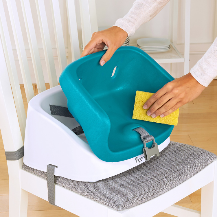 Bright Starts Smart Clean Toddler Booster Seat