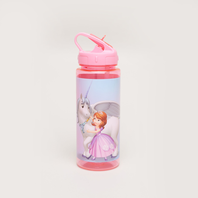 Disney Sofia The First A Magic Match Water Bottle