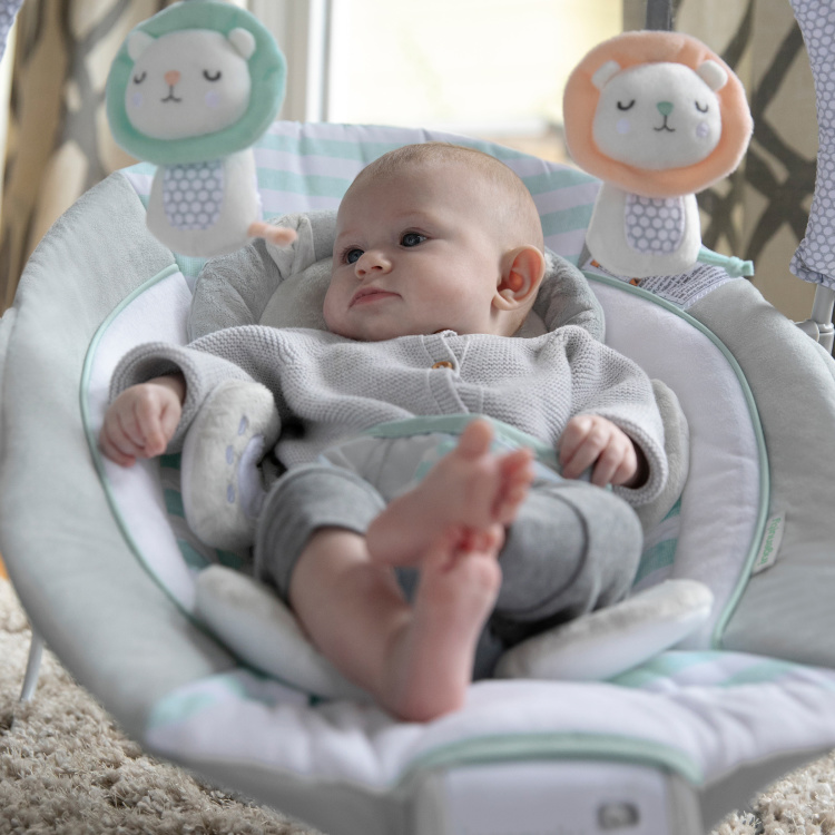 Bright Starts Cradling Bouncer with Toys