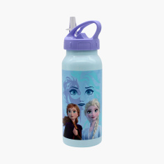 Disney Frozen 2 Print Stainless Steel Water Bottle