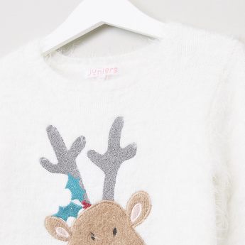 Juniors Plush Sweater with Embroidery